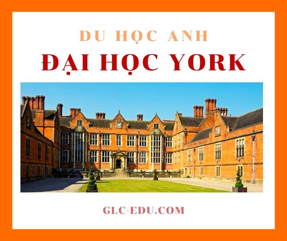 Đại học York